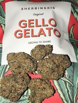 Buy Gello Gelato online Australia Order Gello Gelato weed Sweden Buy marijuana in New Zealand Where to buy cannabis online Ireland