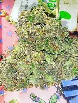 Buy Jilly Bean weed Online Pennsylvania Order medical weed In Ireland Buy cbd gummies In Minnesota Buy Jilly Bean Italy Buy thc vape juice Indiana Order Marijuana For Seizure Online Pennsylvania USA